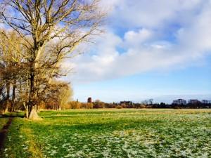 Blick zum Schloss Güstrow. Foto: Bianca Garloff