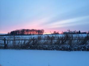 Güstrower Sumpfseewiesen im Winter. Foto: Bianca Garloff
