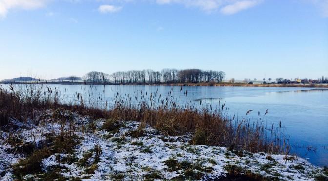 Zuhause unterwegs: Sumpfsee bei Güstrow
